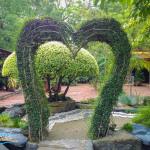 Precious Garden Resort (12)