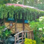 Villa Amparo Beach Resort (10)