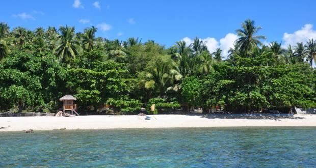 Island PAngubatan