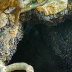 Monfort Bat Cave (9)