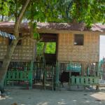 Isla Beach Resort Samal Guide